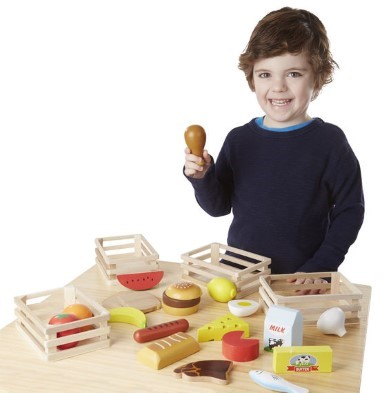 wooden food groups toy