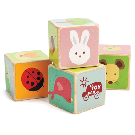 PL007 Little Leaf Wooden Blocks by Le Toy Van 004
