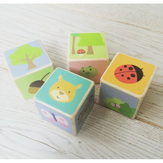 PL007 Little Leaf Wooden Blocks by Le Toy Van 003
