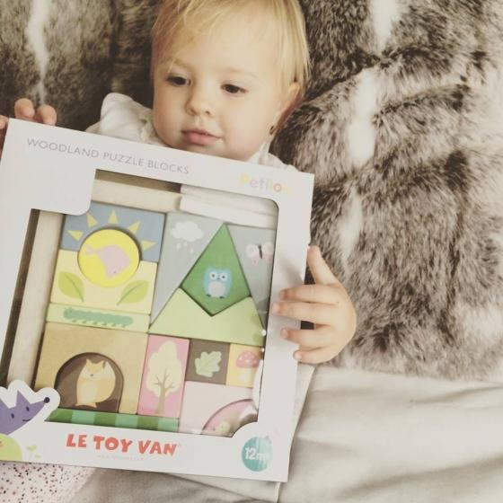 PL002 Woodland Puzzle Blocks by Le Toy Van 005