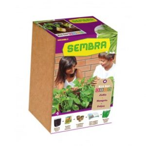 kids garden My First Green Bean Growing Kit 002