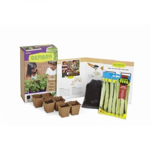 My First Green Bean Growing Kit