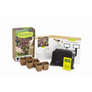My First Lettuce Growing Kit