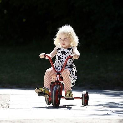 Mini Viking Tricycle Low Seat