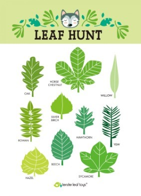 forest trail kit by tender leaf toys stickers