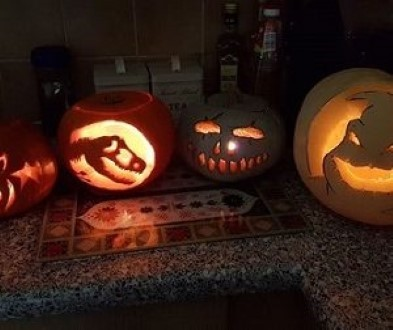 pumpkin pictures winners