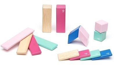 tegu wooden block pieces